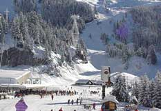 Resort Information  FLAINE