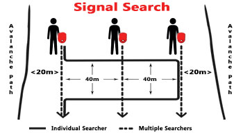 Signal Search