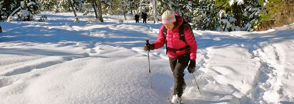 X-country skiing and snowshoeing insurance